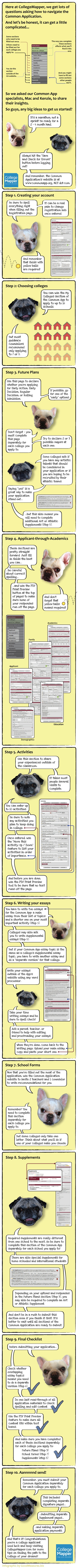 A dog's guide to the Common Application